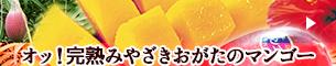 おがたのマンゴー